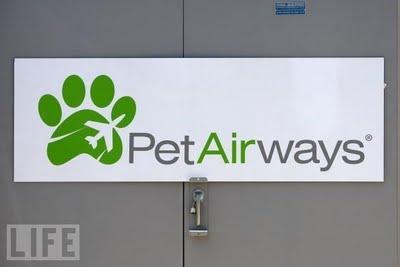 pet_airways_05