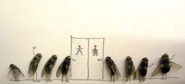 dead_flies_07