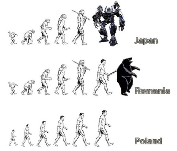 evolution_02