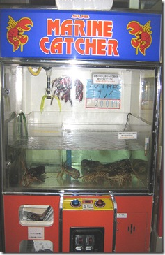 lobster_claw_game