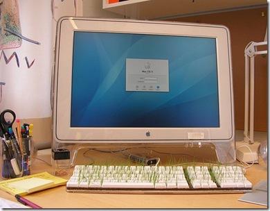 mac-os-x-keyboard-grass