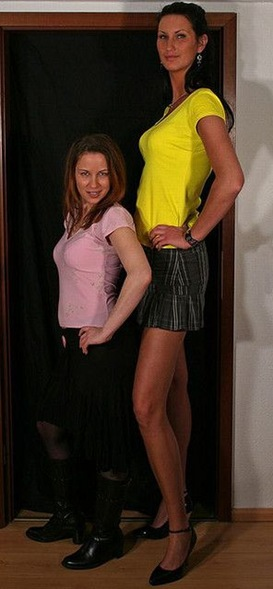 tallest_girls_11
